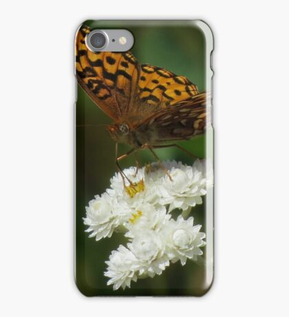 Butterfly and Hoverfly, Mt. Rainier iPhone Case/Skin