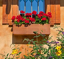 Canada. British Columbia. Window & Flowers. by vadim19