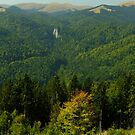 Autumn in the Bucegi Mountains by Themis