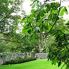 Gloriously Green - Lews Castle Grounds by BlueMoonRose