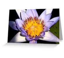 Gold and Purple Petals au Fresco Greeting Card
