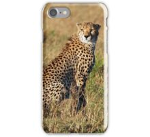 Cheetah iPhone cover iPhone Case/Skin