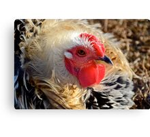 One Tough Chick Canvas Print