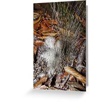 Furry Fungi Greeting Card