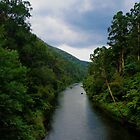 The river leading to Walhalla by Janine Livingston