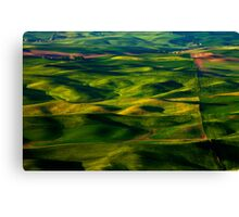 Furrows and Folds Canvas Print