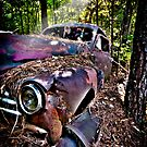 """It's Been A Ride"" - old automobile in woods by ArtThatSmiles"