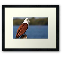 river queen Framed Print