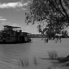 Paddle Wheeler - Murray River by Noel Elliot