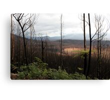 Post February 2009 Bushfires Victoria - Marysville July09 Canvas Print