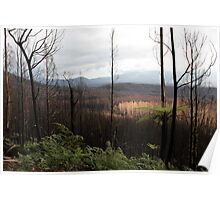 Post February 2009 Bushfires Victoria - Marysville July09 Poster