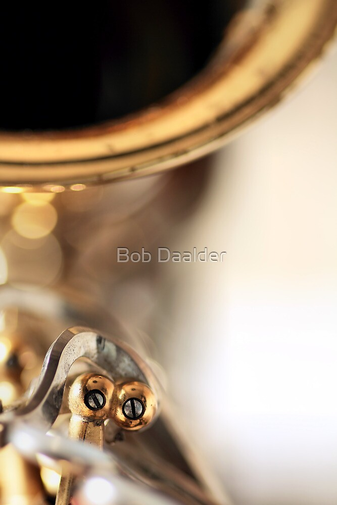 Careless whisper... (2) by Bob Daalder