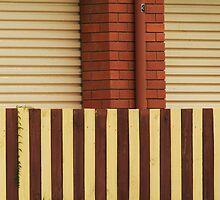 Striped by tenzil