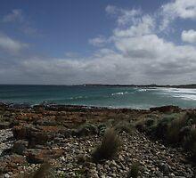 stunning Nettle Bay - by Mawbanna by gaylene