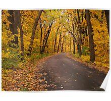 An Autumn Drive Poster