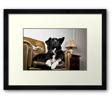 The King on his throne Framed Print