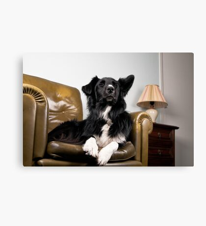 The King on his throne Canvas Print