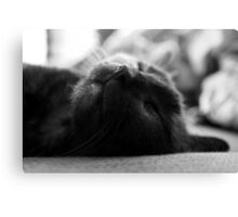 Sleeping Purity Canvas Print