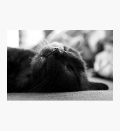 Sleeping Purity Photographic Print