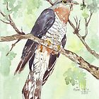 Birds Calendar - Watercolours by Maree Clarkson by Maree  Clarkson