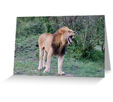 Morning Whats for Breakfast??!! Greeting Card