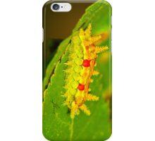 Spiny Oak Caterpillar IPhone Case iPhone Case/Skin