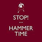 STOP! (Keep Calm)...Hammer Time (iPhone) by maclac