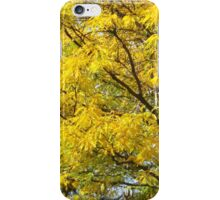 Autumn Colors, Central Park, New York City iPhone Case/Skin