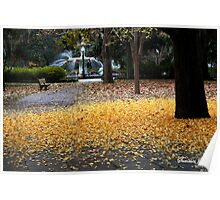 A Carpet of Golden Leaves Poster