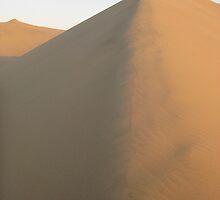 dune by Shai Biran