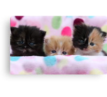 We're awake from hypersleep and ready for action! Canvas Print
