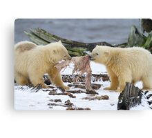 Tug-O-War Canvas Print