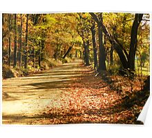 Fall in the Ozark Hills Poster