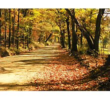 Fall in the Ozark Hills Photographic Print