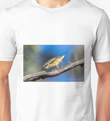 Striated Pardalote T-Shirt
