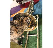 Trombone and Gracie Photographic Print