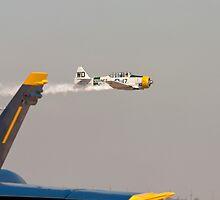 North American Aviation T-6 Texan  by Buckwhite