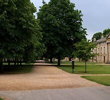 cambridge downing college by Ilapin