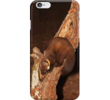 Pine Marten iPhone Case iPhone Case/Skin