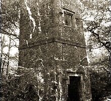 Dawes Folly, Holly Hill by Dave Godden