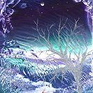 The Silver Planet by Caroline Senior