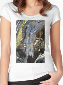 Swan Face In Driftwood  Women's Fitted Scoop T-Shirt