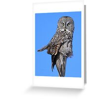 Totem of the great grey Greeting Card