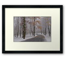 Trick or Treat Snow Framed Print
