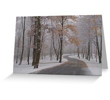 Trick or Treat Snow Greeting Card