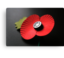 Poppy Appeal Canvas Print