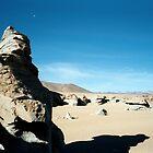 Atacama Giant - Atacama Desert, Bolivia by joegardner
