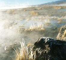Frozen Grass in Volcanic Lands - Bolivia by joegardner