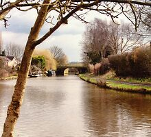 Leeds and Liverpool Canal by Liam Liberty