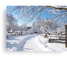 Snowy farm lane Canvas Print